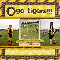 tigers-2012-AYSO_web.jpg
