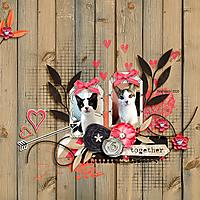 together_kitties_fb.jpg