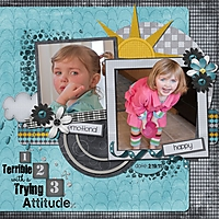 trying_3_attitude_600_x_600_.jpg