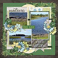 viera-wetlands.jpg