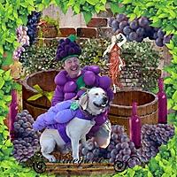 vineyard_bee.jpg