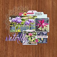 waterlilySwL_MBC_717Template-copy.jpg
