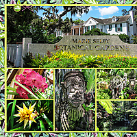 web_2017_Florida_August22_SelbyGardens2_SwL_BlockandPaperStrips_12x24_plain2_left.jpg