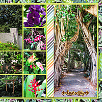 web_2017_Florida_August22_SelbyGardens2_SwL_BlockandPaperStrips_12x24_plain2_right.jpg