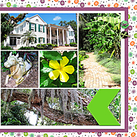 web_2017_Florida_August22_SelbyGardens4_SwL_10_17MIRTemplate_right.jpg