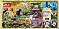 web_djp332_2017_OhioTrip_9_30_Zoo_SwL_10_16MIRTemplate.jpg