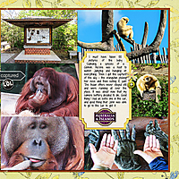 web_djp332_2017_OhioTrip_9_30_Zoo_SwL_10_16MIRTemplate_right.jpg