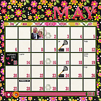 web_djp332_AmandaYi_Amotheris_SwL_12x12_May2018CalendarTemplate.jpg
