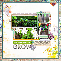web_djp332_LG_Sprout_SwL_ASliceofLifeTemplate4.jpg