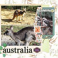 web_djp332_Ohio_Zoo_Australia_SwL_SimpleandSweetTemplate8_11_right.jpg