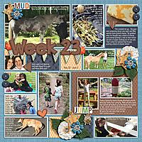 week23_BackyardAdventures_Pocketful7_-web.jpg