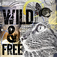 wild_and_free_fb.jpg