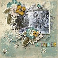 winter4_600_x_600_.jpg