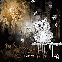 winter_fb.jpg