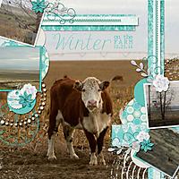 winter_on_the_farm.jpg