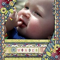 wonder_Custom_.jpg