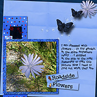 Roadside-Flowers.jpg