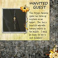 Uninvited_Guest_081309b.jpg