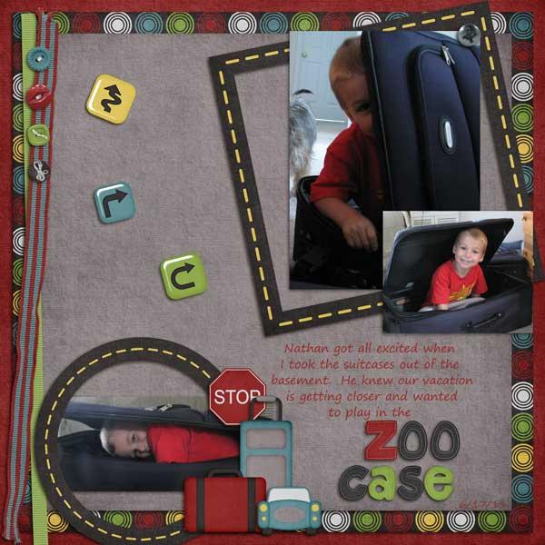 Zoo Case