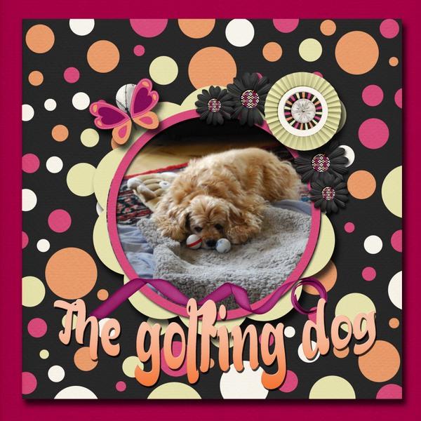 The_golfing_dog