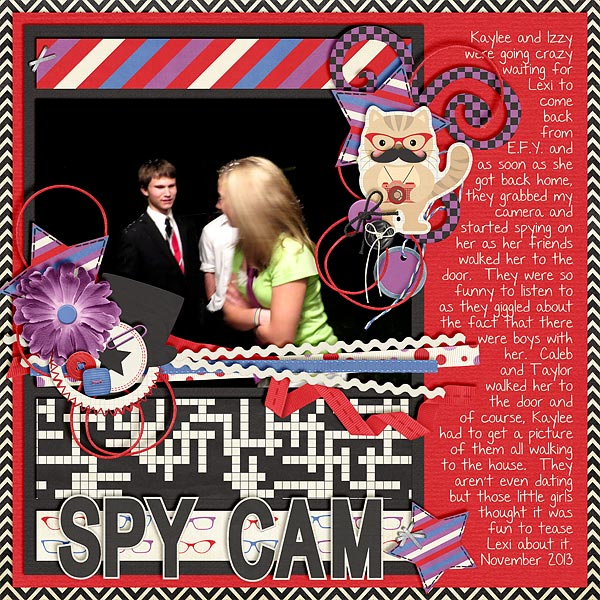 Spy Cam