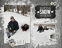 2015_02-003_Snow_Much_Fun.jpg