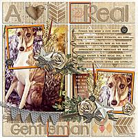 A-Real-Gentleman-kkEveryLittleThing-kkJanFBtemp-GS.jpg