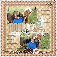Donkey-kkJinglealltheWay.jpg