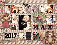 MAX2017.jpg