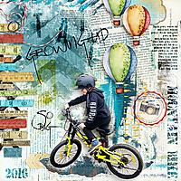 Mountain-Bike-kkBestDayEver.jpg