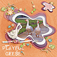 Playful-Geese-SDSpring-a-LingMini-UIAChalApril.jpg