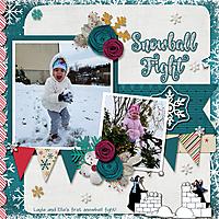 Snowball-Fight2.jpg
