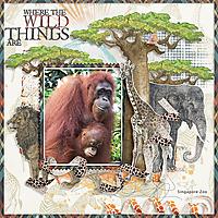 Wild-Things-kkWildThings.jpg