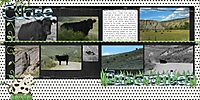 cow_double_page.jpg