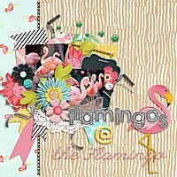 flamingos_fb.jpg