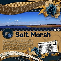 marsh_600_x_600_.jpg