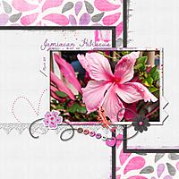 scrapbook_2011-03-Jamaican-Hibiscus.jpg