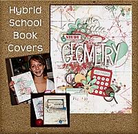 hybrid-covers-sb.jpg