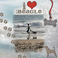 beach_beagle.jpg