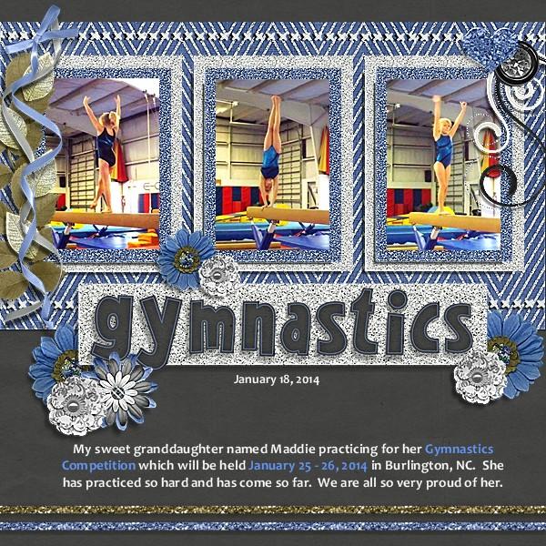 Gymnastics Jan 18, 2014