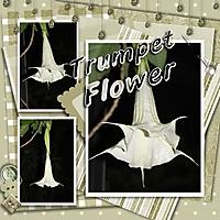 GS_trumpet_flower_-_Page_091.jpg