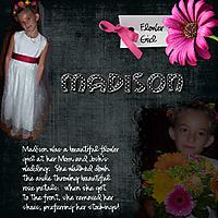 Madison_062009b.jpg