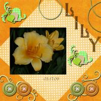 lily1_copy.jpg