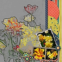 Tulips-Slow-Scrap_.jpg