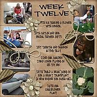 Week_12_Template_4.jpg