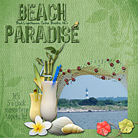Beach_Paradise_week_1_copy.jpg