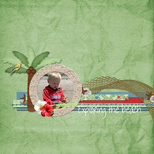 Exploring the beach
