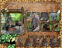 Safari4.jpg