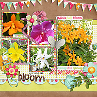 0503-gs-in-full-bloom.jpg