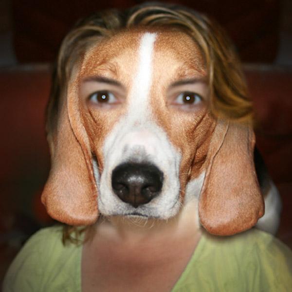My Doggme